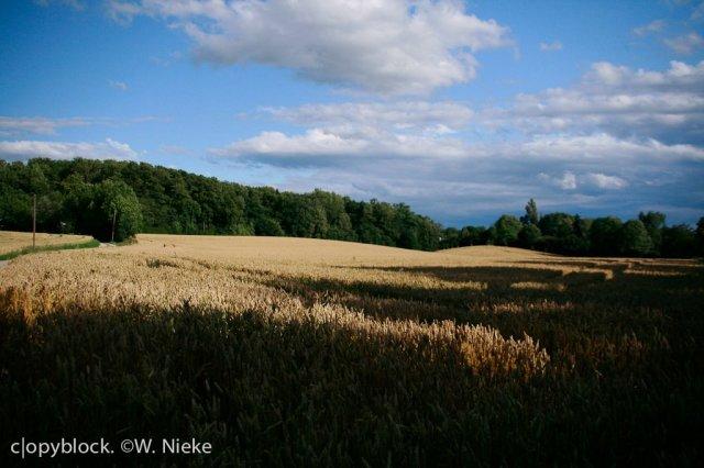 Near Stegen, Ammersee, Bavaria, Germany